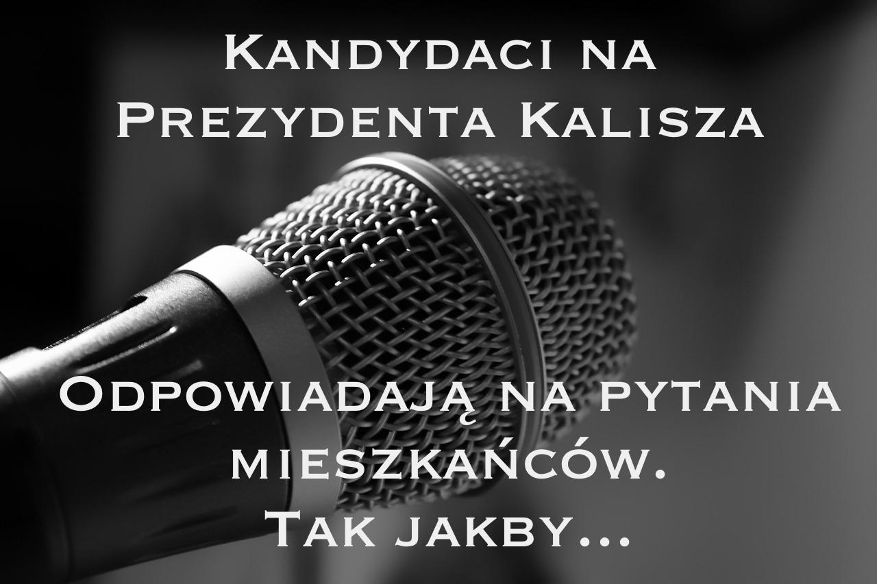 Wybory Kalisz 2014